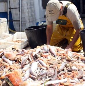 Pesca en el Levante Almeriense
