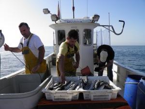 Pesca de pulpo con nasas en el Levante Almeriense