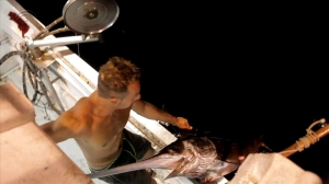Pesca de pez espada